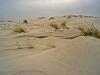 hoge zandduinen