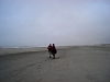 56ezel-op-strand-06-12-158a