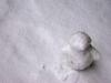een winter met sneeuw